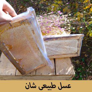 عسل طبیعی شان