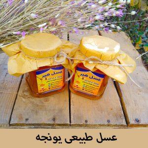 عسل طبیعی و درمانی یونجه