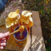 فروش عسل طبیعی یونجه