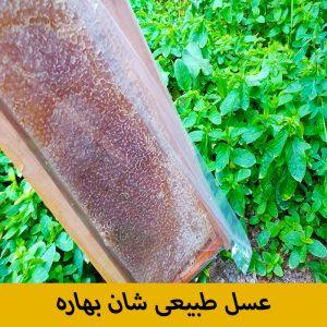 عسل طبیعی شان بهاره