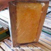 عسل طبیعی شان _عکس4