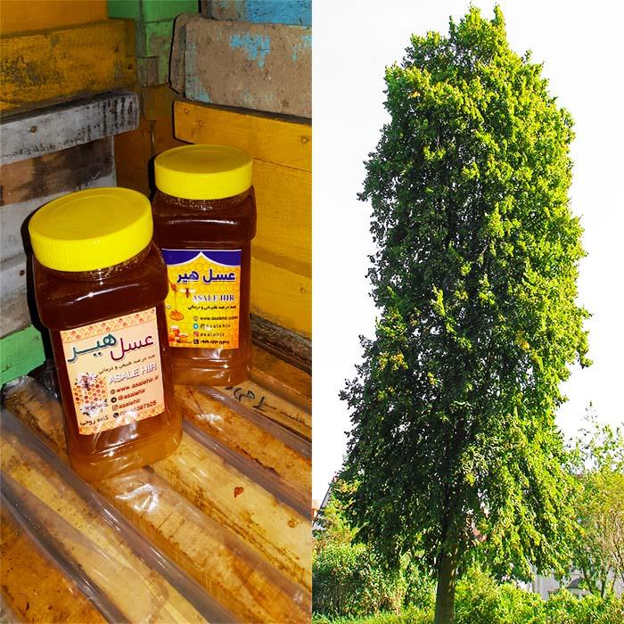 عسل طبیعی نمدار